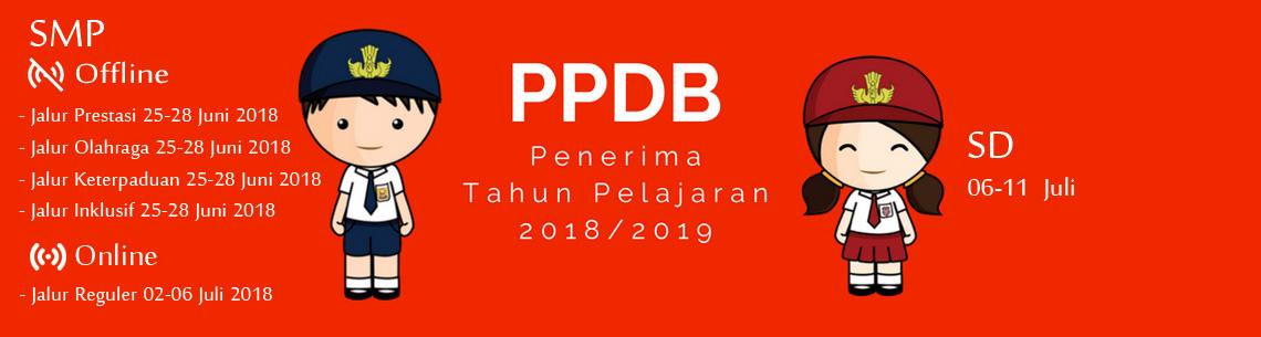 PPDB<BR>2018